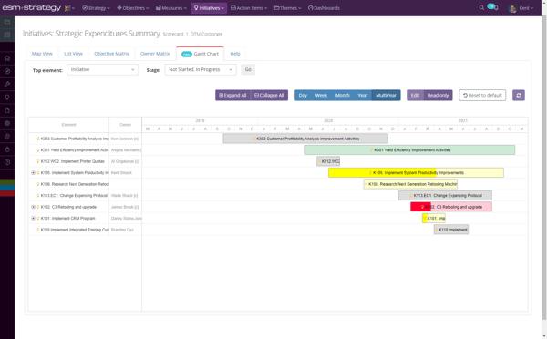 Screenshot +Strategy - Initiatives Ghantt Chart