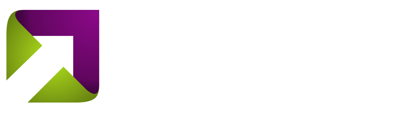 The Strategy Execution Company
