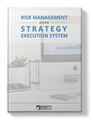 Risk Management and the Strategy Execution System Mockup Shadows