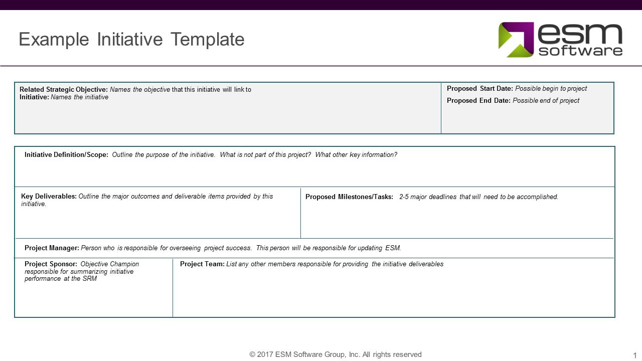 Example Initiative Template - ESM