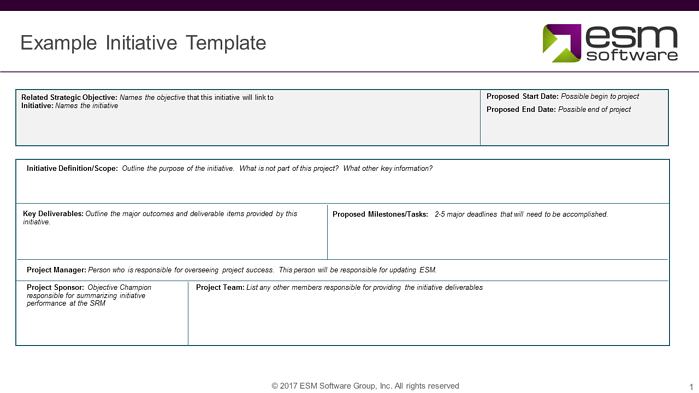 Initiative template example