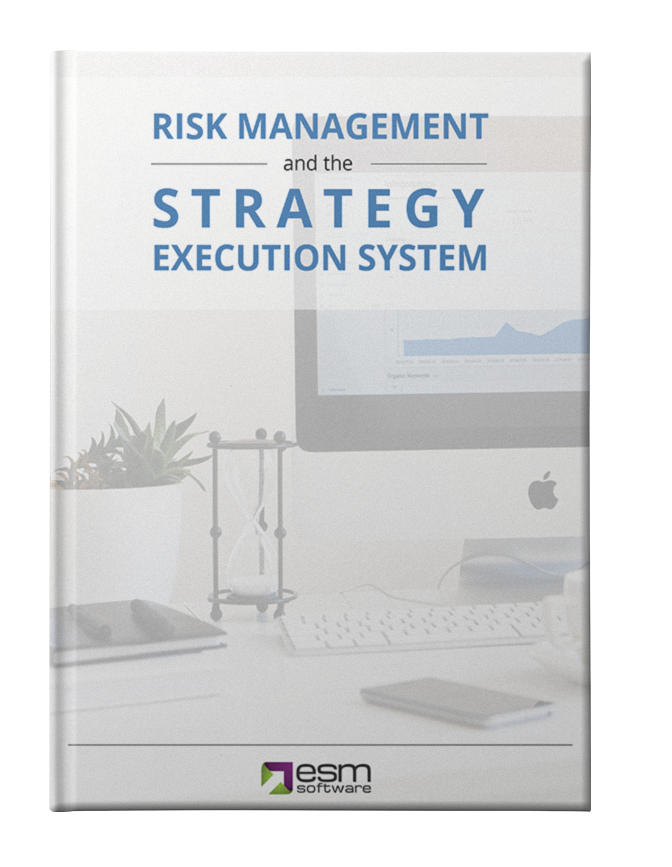 Risk Management and the Strategy Execution System Mockup