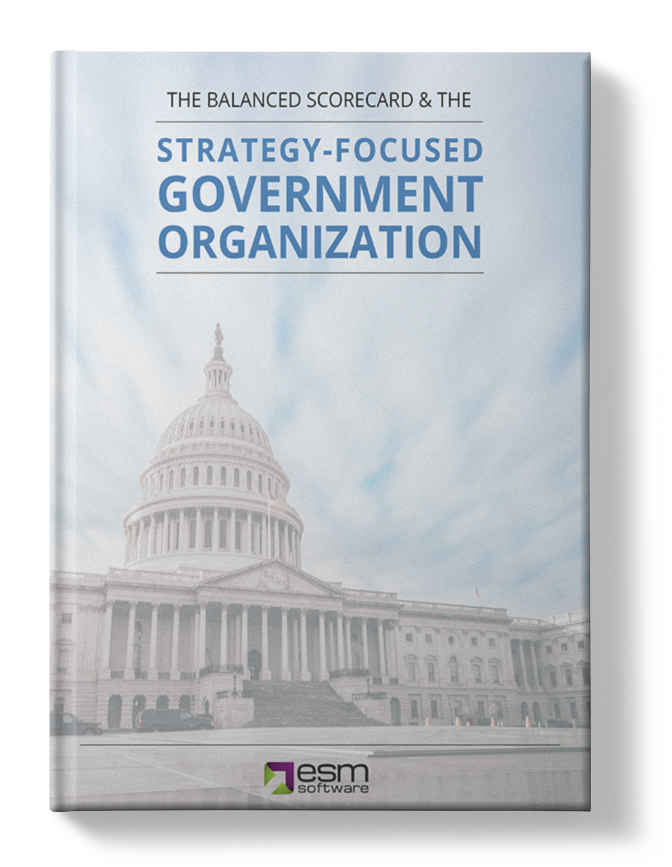 ESM's Strategy-Focused Government Organization
