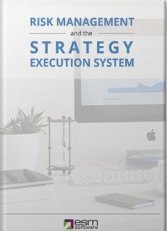 ESM's Risk eBook Download